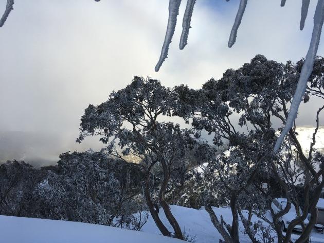 snow-2600194_960_720